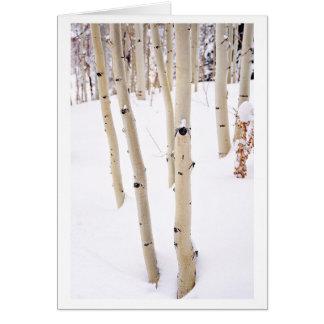Trembles dans la neige, tellurure Co Carte De Vœux