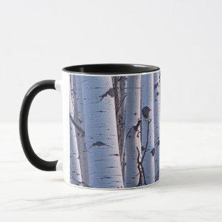 Trembles en parc national de Gunnison Mugs