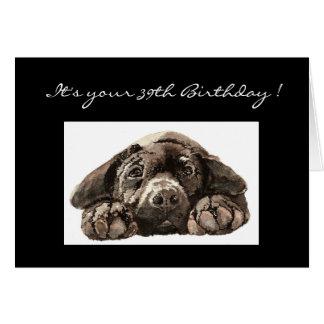 Trente-neuvième anniversaire drôle, labrador cartes
