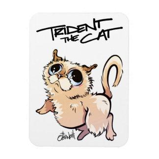Trident l'aimant illustré par chat 01 magnet rectangulaire avec photo