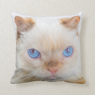 Trident le carreau de chat coussin
