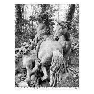 Tritons toilettant deux chevaux du soleil cartes postales