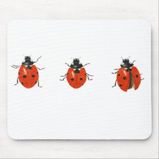 Trois coccinelles 2013 tapis de souris