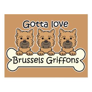 Trois griffons de Bruxelles Carte Postale