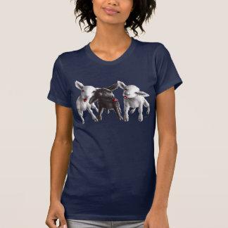 Trois moutons effrontés drôles t-shirt