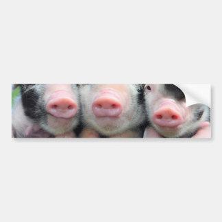 Trois petits porcs - porc mignon - trois porcs autocollant de voiture