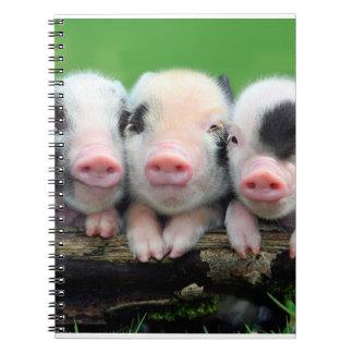Trois petits porcs - porc mignon - trois porcs carnet