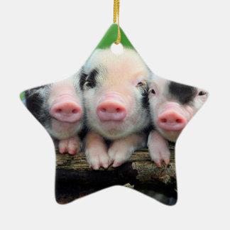 Trois petits porcs - porc mignon - trois porcs ornement étoile en céramique