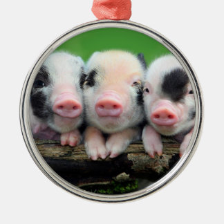 Trois petits porcs - porc mignon - trois porcs ornement rond argenté