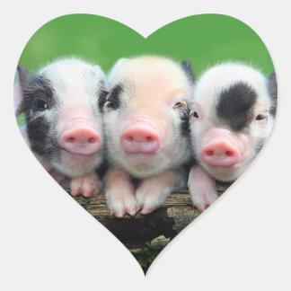 Trois petits porcs - porc mignon - trois porcs sticker cœur