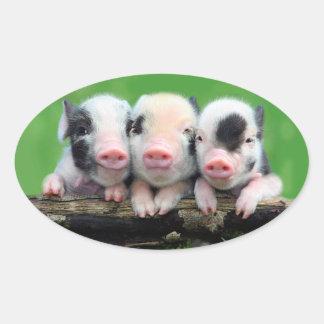 Trois petits porcs - porc mignon - trois porcs sticker ovale