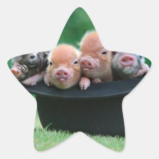Trois petits porcs - trois porcs - casquette de sticker étoile
