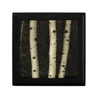 Trois piliers de la forêt boîte à souvenirs