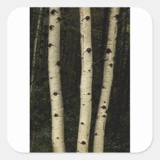 Trois piliers de la forêt sticker carré
