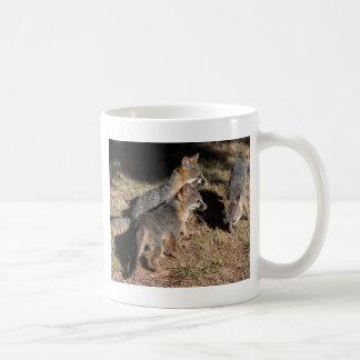 Trois renards de bébé mug blanc