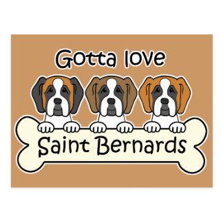 Trois saint Bernards Carte Postale