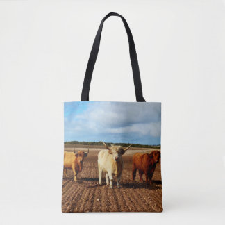 Trois vaches des montagnes vilaines, sac à