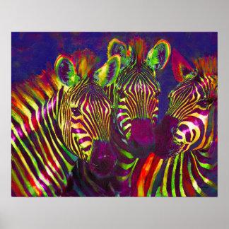 trois zèbres au néon poster