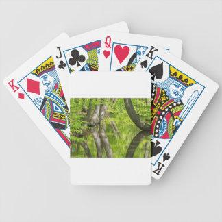 Troncs d'arbre de hêtre avec la forêt de l'eau au jeu de cartes