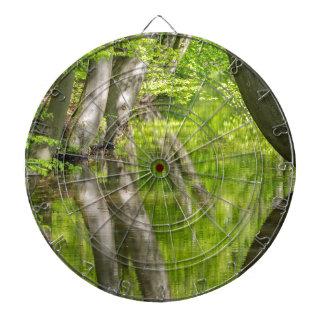 Troncs d'arbre de hêtre avec la forêt de l'eau au jeu de fléchettes