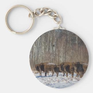 Troupeau de bison porte-clés