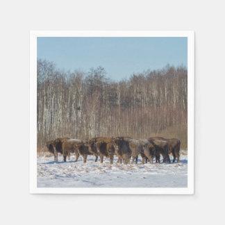 Troupeau de bison serviettes en papier