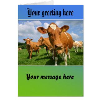Troupeau de carte de voeux de vaches