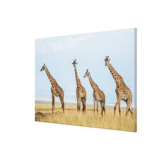 Troupeau de girafe dans la prairie toile