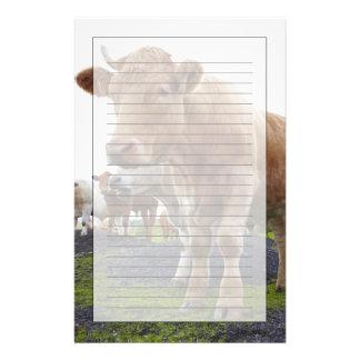 Troupeau de jeunes vaches blanches dans le domaine papier à lettre customisable
