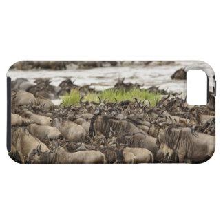 Troupeau massif de gnou pendant la migration, coques iPhone 5