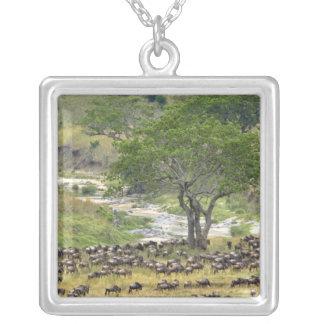 Troupeau massif de gnou pendant la migration, pendentif carré
