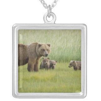 Truie d'Alaska et trois CUB, Ursus d'ours de Brown Pendentif Carré