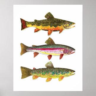 Truite 3 pour des pêcheurs et des Fisherwomen de Poster