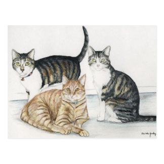 Tubby, tigre et carte postale originale minuscule