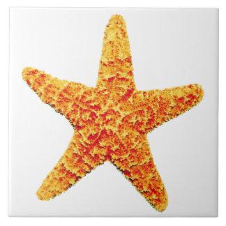 Tuile en céramique décorative d'étoiles de mer grand carreau carré