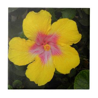 Tuile florale Hawaï de ketmie jaune tropicale Petit Carreau Carré