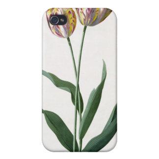 Tulipe de tulipe coque iPhone 4 et 4S