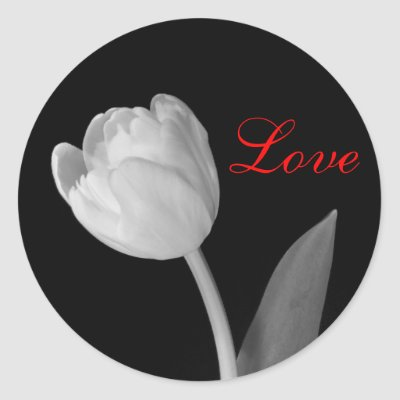 Femme Actuelle (Astro 2015) - Page 5 Tulipe_noire_et_blanche_amour_autocollant-p217056051996667345z85xz_400