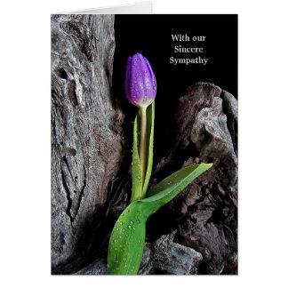 Tulipe pourpre sur le bois de flottage carte de vœux