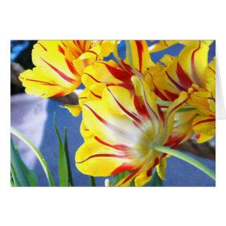 Tulipes Carte De Vœux