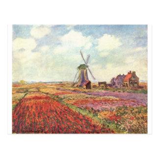 Tulipes de Claude Monet en Hollande Carte Postale