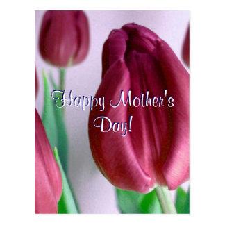 Tulipes heureuses de Rosey du jour de mère Cartes Postales
