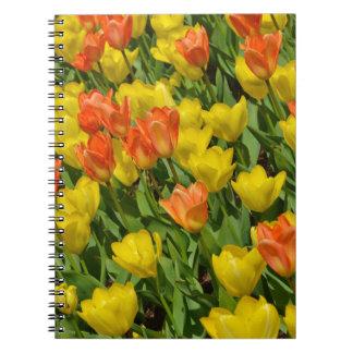 Tulipes oranges et jaunes de ressort carnet