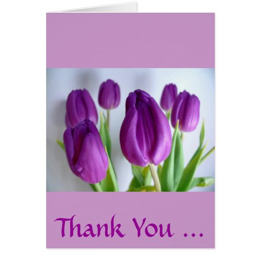 Tulipes pourpres carte de vœux