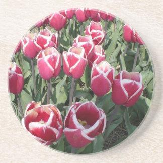 Tulipes roses de Hollande Dessous De Verres