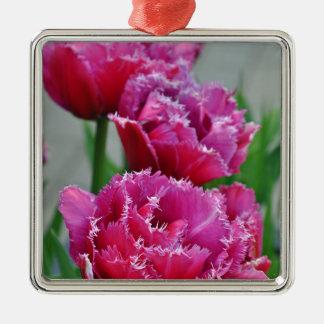 Tulipes roses de perroquet ornement carré argenté