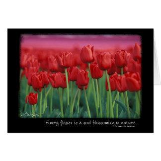 Tulipes rouges avec la citation de Gerard DeNerval Cartes
