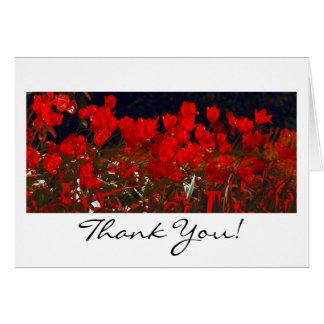 Tulipes rouges vibrantes, carte de voeux de Merci