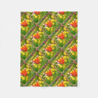 Tulips_321_B_R2 coloré