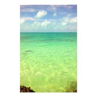 Turcs de l'océan | d'Aqua et photo verts de la Prospectus 14 Cm X 21,6 Cm
